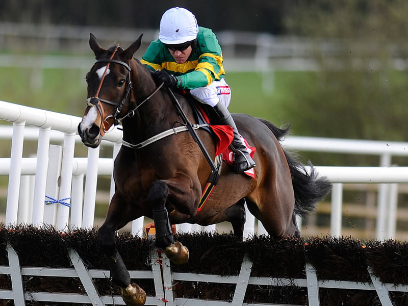 Champion Hurdle Festival Betting Tips