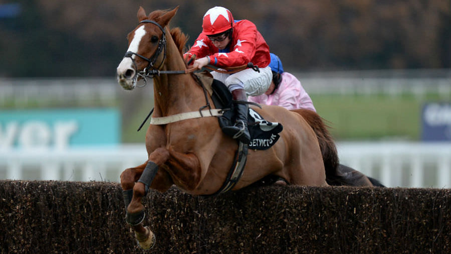 Cheltenham Festival Day 2 Expert Accumualtor Betting Tips
