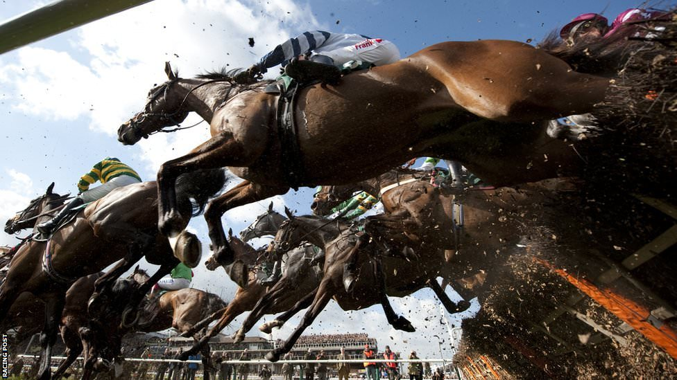2016 Cheltenham Festival Free Tips – DAY TWO
