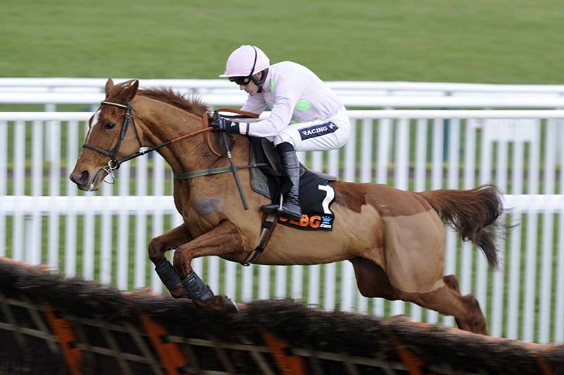 Cheltenham day 1 tips Annie Power