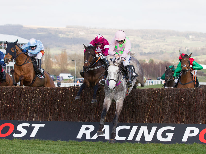 2016 Cheltenham Festival - DAY ONE FREE TIPS