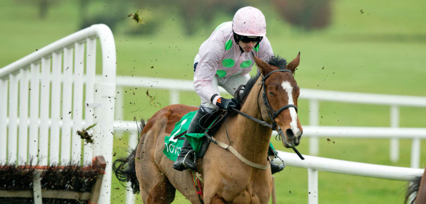 2017 Champion Hurdle betting tips