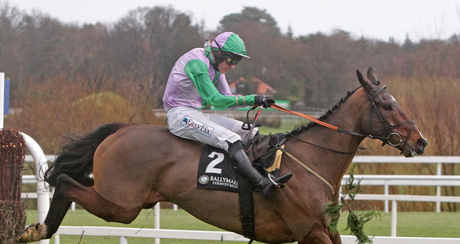 Irish Lucky 15 Betting Tips