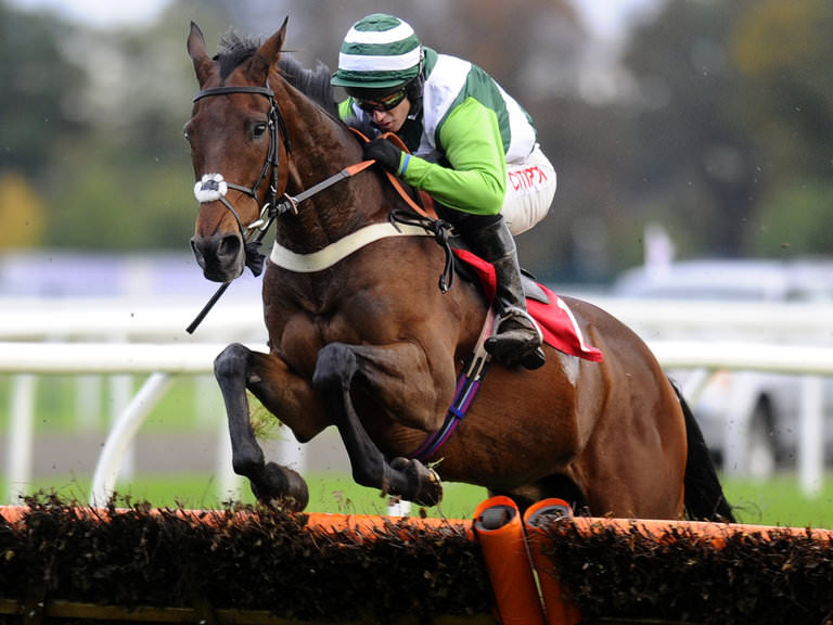 World Hurdle tips Cheltenham 2015