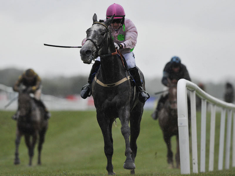 Day 2 Channel 4 Expert Cheltenham Festival Betting Tips