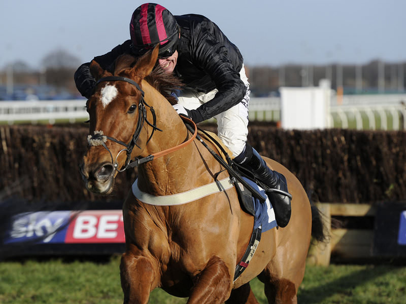 Arkle 2015 expert tips
