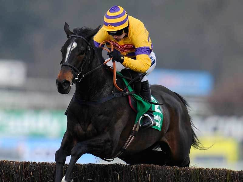 2016 Bet365 Gold Cup Betting Guide & Trends