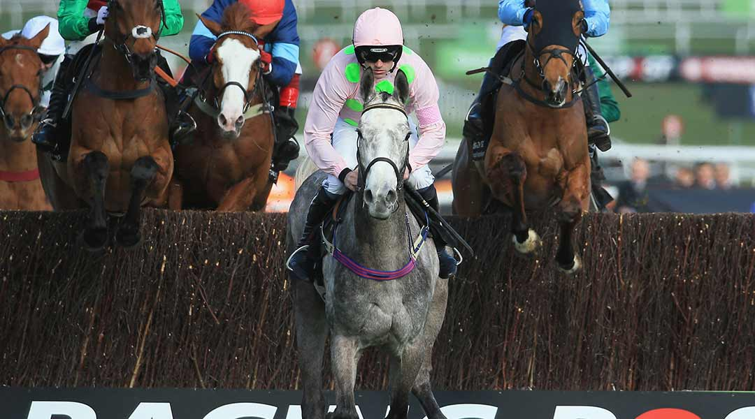 Cheltenham Festival Day 2 Expert Betting Tips
