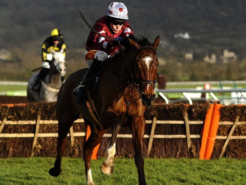 Cheltenham day 2 tips