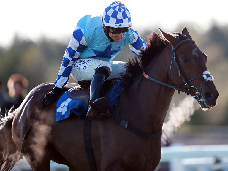 Arkle Novices' Chase Betting Tips
