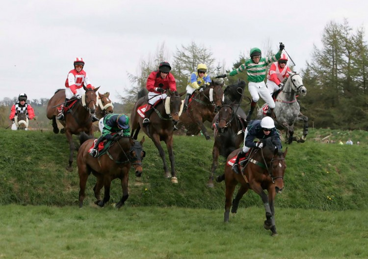 2016 Aintree Grand National Betting Trends
