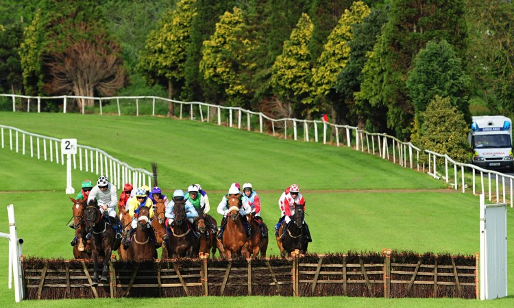 Horse racing tips for today