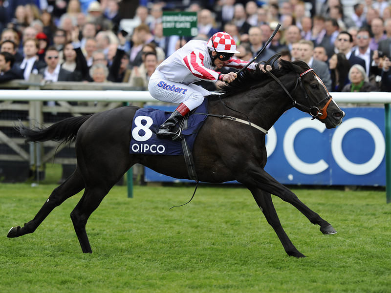 King's Stand Stakes betting tips 2015