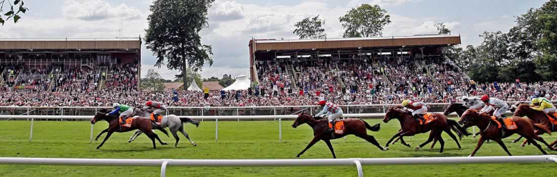 free newmarket july meeting tips