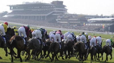 Day 2 Cheltenham Festival betting tips