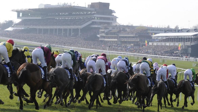 Day 2 Cheltenham Festival betting tips