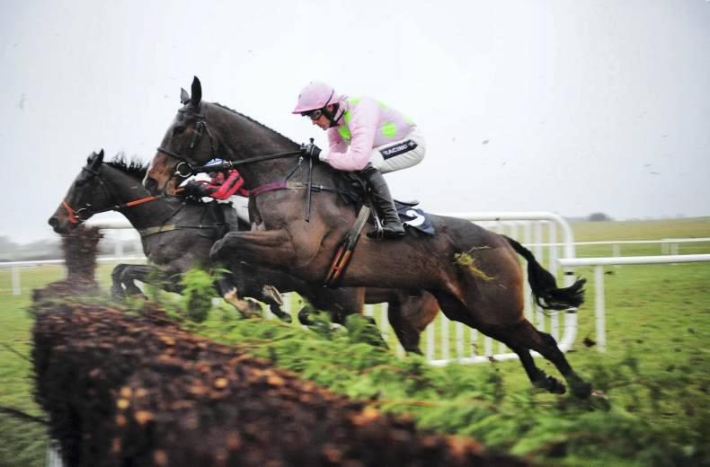 Mares Hurdle betting tips