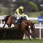 melon Supreme Novices Hurdle
